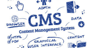 cms, content, management, system, open-source, webseite, website, web, webdesign, piktogramm, internet, webhosting, programmierung, administrator, browser, admin, www, zugriffsrechte, homepage, programmierer, autor, design, designer, hosting, domain, e-business, e-commerce, ebusiness, ecommerce, edv, entwerfen, computer, community, erstellen, forum, mŠnnchen, informatik, it, konzept, layout, media, network, online, software, technologie, term, text, wort