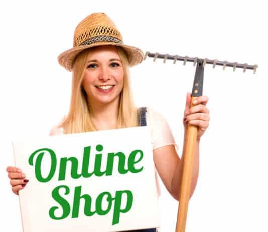 online-shop-frau-2